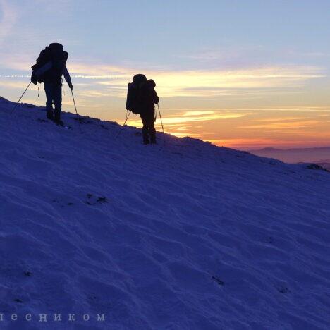 «Язик Вуйка» та гора Пікуй, уік-енд у Карпатах!