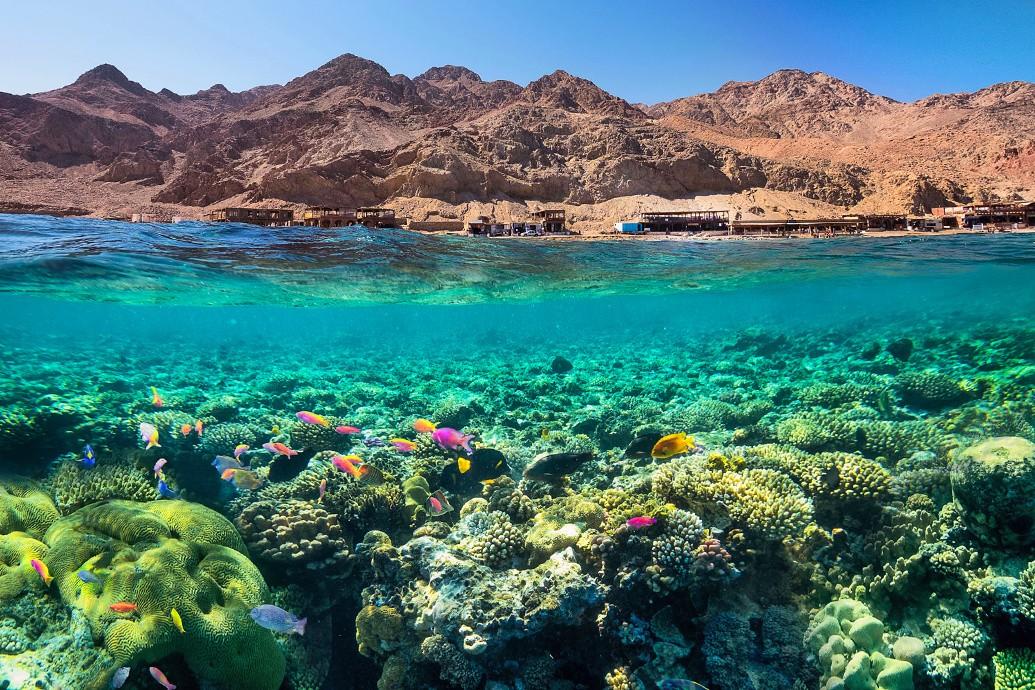 Активный Тур в Египет!